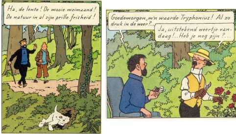 Error in Tintin (The Castafiore emerald)