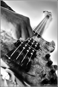 rockingtheharp_0112a
